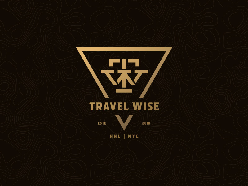 travel wise logo